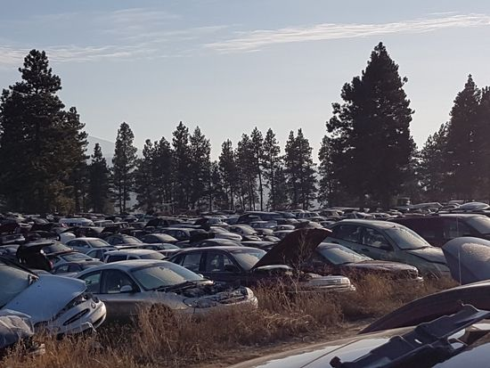 Thousands of Salvage Vehicles